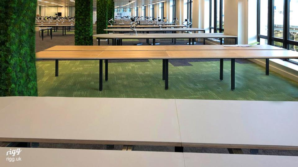 Modular Desking System with Plywood, HPL, Oak