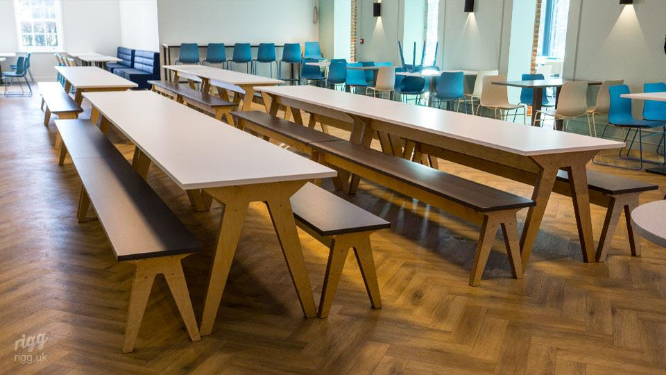 Contemporary College Dining Hall Table & Benches