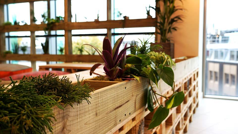 Bespoke Office Planters, Media Office London