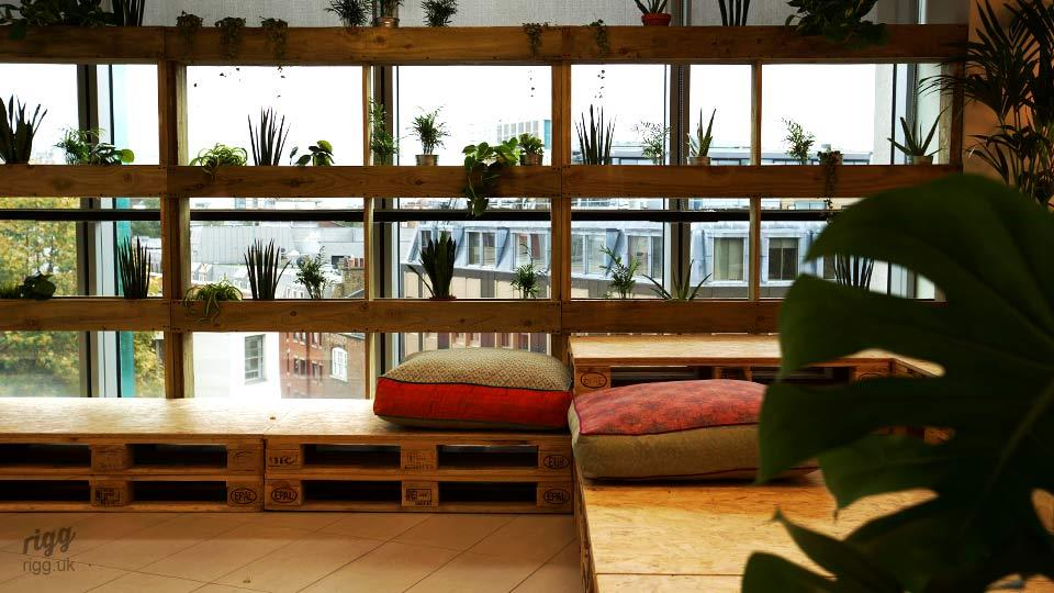 Wooden Window Planters with View of London